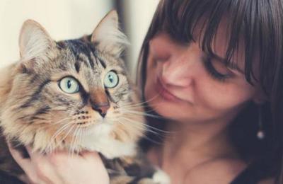 Una mujer descubre que está embarazada gracias a su gato