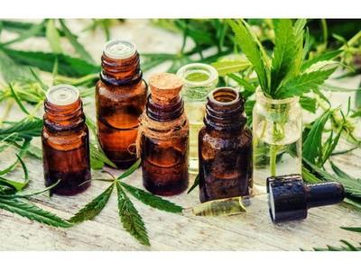Cámara de Cannabis denuncia irregular registro en Dinapi