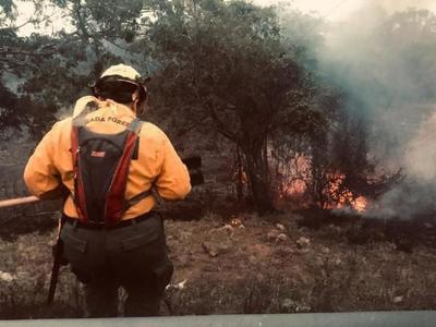 Investigan  incendio en zona de reserva