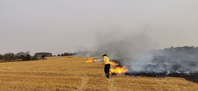 Bomberos del Este piden sanciones severas para los que queman basura y pastizales