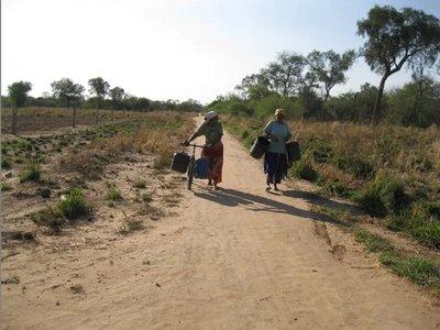 Declaran en emergencia a Boquerón por sequía y focos de incendio