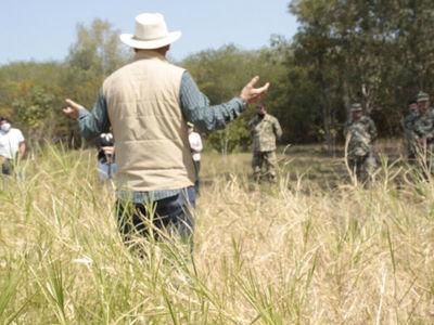 Especies invasoras serán extraídas para introducir plantas nativas en Parque Guasu Metropolitano
