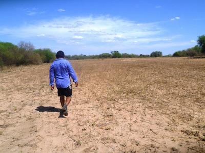 Boquerón declaró emergencia por sequía y focos de incendio