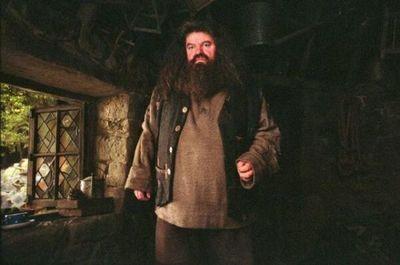 Actor de Harry Potter defiende esta vez a J.K. Rowling