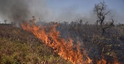 Gobierno Boliviano decretó emergencia nacional por incendios forestales