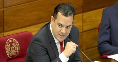 """La Nación / La otra cara del Senado: Friedmann salvado por """"cautela"""" y se mantiene en su banca"""