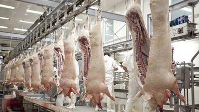 Paraguay suspende importación de productos y subproductos porcinos de Alemania