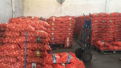 Decomisan unas 44 toneladas de cebollas de contrabando, valuadas en más de G. 280 millones