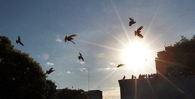 Meteorología pronostica para hoy una mañana fresca y tarde calurosa
