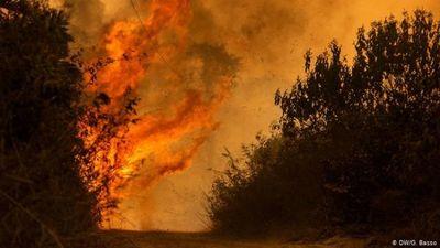 El Pantanal arde y aumenta presión sobre Bolsonaro
