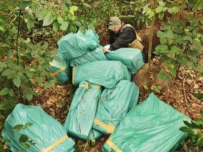 Detectan cargamento de Marihuana oculto dentro de una fosa en Yby Yaú