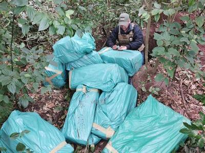 Incautan 337 kilos de marihuana ocultos dentro de una fosa en Yby Yaú