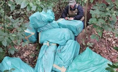 SENAD halla 337 kilogramos de marihuana ocultos en una fosa