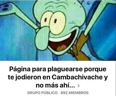 Crónica / Mañami, crean grupo para plaguearse porque te jodieron en Camba