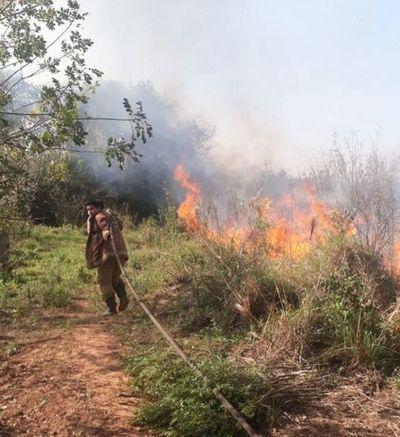 Se incendian cinco reservas forestales de Alto Paraná