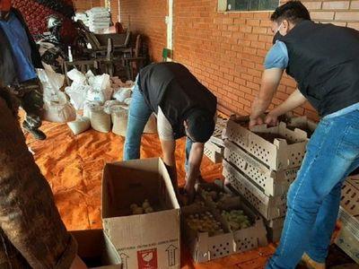 En Bella Vista brindan ayuda a los pequeños productores