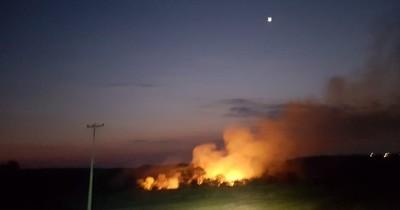 La Nación / Incendio destruyó 5 hectáreas de bosque en Presidente Franco