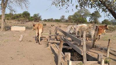 Dramática sequía en cuenca del Pilcomayo