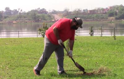 Plantan más 100 árboles nativos donados por la EBY en la Costanera de Encarnación