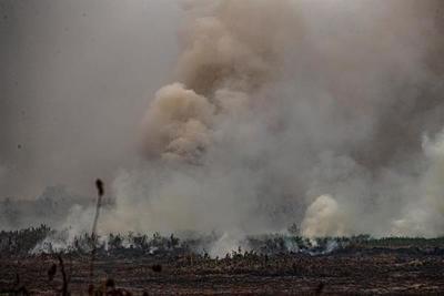 Brasil crea una secretaría específica sobre Amazonía tras crisis ambiental