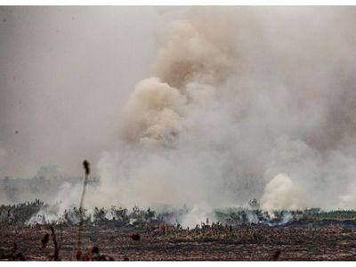 Piden refuerzos para combatir incendios en el Pantanal