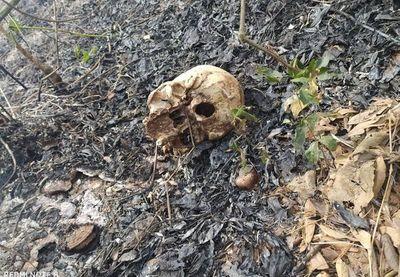 Hallan restos óseos en un yuyal de Ypacaraí