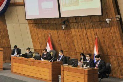 ANDE presenta a la Comisión Bicameral su Presupuesto 2021
