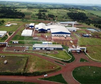 Gobierno de Marito deniega el funcionamiento de frigonorte y Athena Foods dejando de lado a unos 700 operarios afectados