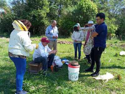 Apicultores de Ayolas se capacitan para mejorar producción