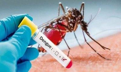 Crónica / Dengue ndaje podría dar inmunidad contra Covid-19