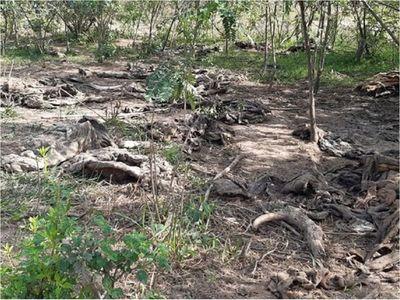 Mades interviene matadero municipal de Villa del Rosario