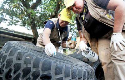 Instan a eliminar criaderos de mosquitos para evitar que casos de dengue se sumen a la COVID-19