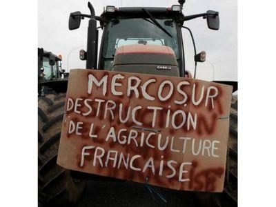 Francia  afirma que no busca frenar acuerdo UE-Mercosur
