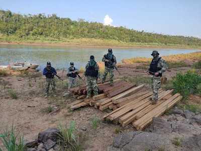 Incautan maderas nativas a orillas del río Paraná