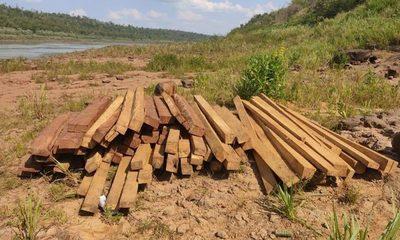 Incautan maderas nativas en el Paraná