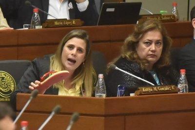 Quieren ocultar presupuesto del Parlasur, afirma diputada
