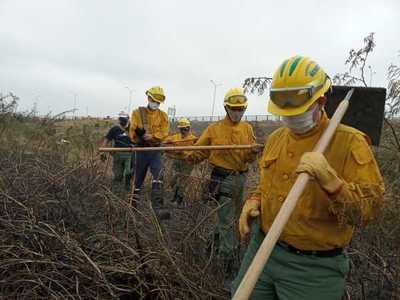 Brigada Forestal de la SEN apoya tareas de extinción de incendios