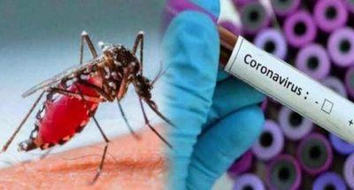 Salud en alerta ante posibles casos de dengue y COVID-19 en un mismo paciente