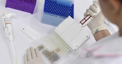 La Nación / Johnson & Johnson comienza la última etapa de ensayos de vacuna contra el COVID-19
