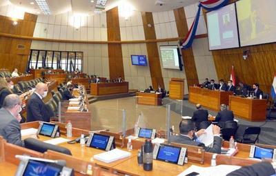 "Cámara de Diputados se ratifica en proyecto de ""Ley de Informconf"""