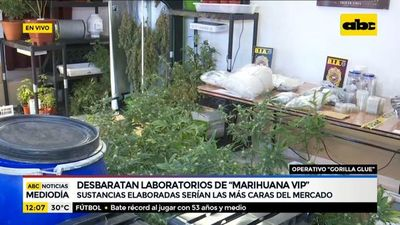 "Desbaratan laboratorios de ""Marihuana VIP"""