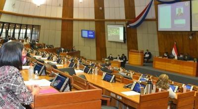 Diputados rechazan veto y aprueban ley de Informconf – Prensa 5