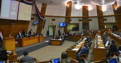 La Nación / Congreso sanciona tibio proyecto de recortes y gastos superfluos en el Estado