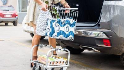 EcoCart propone transportar las compras de forma más consciente y ecológica