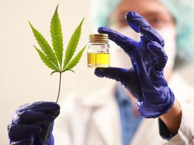 Demuestran que el cannabis reduce múltiples síntomas del Parkinson