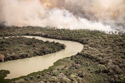 Incendios en el Pantanal brasileño registran el peor mes de su historia
