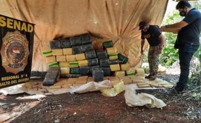 Senad incauta más de 1,5 toneladas de marihuana en Canindeyú