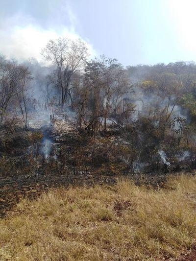 De nuevo se incendió el Cerro Patiño