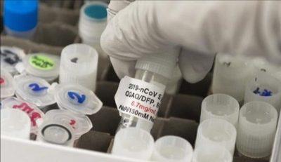 Vacuna contra covid-19 : Novavax ya arranca fase final de ensayo clínico