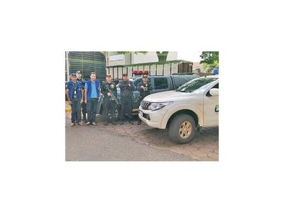 Incautan en Brasil camiones con ganado  paraguayo